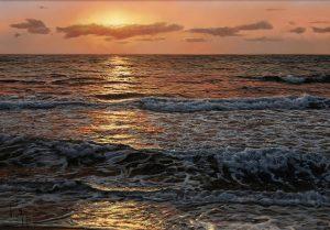 Navarro - navarro original seascape