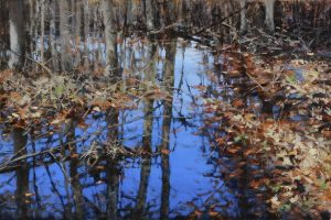 Matthew Cutter - Fall Reflections