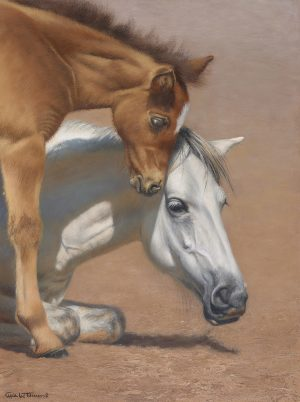 NOAPS - Carol Lee Thompson art
