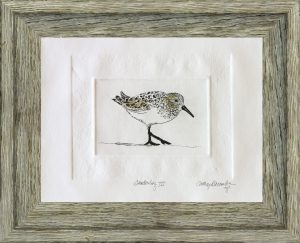 Cathey December - Sanderling III