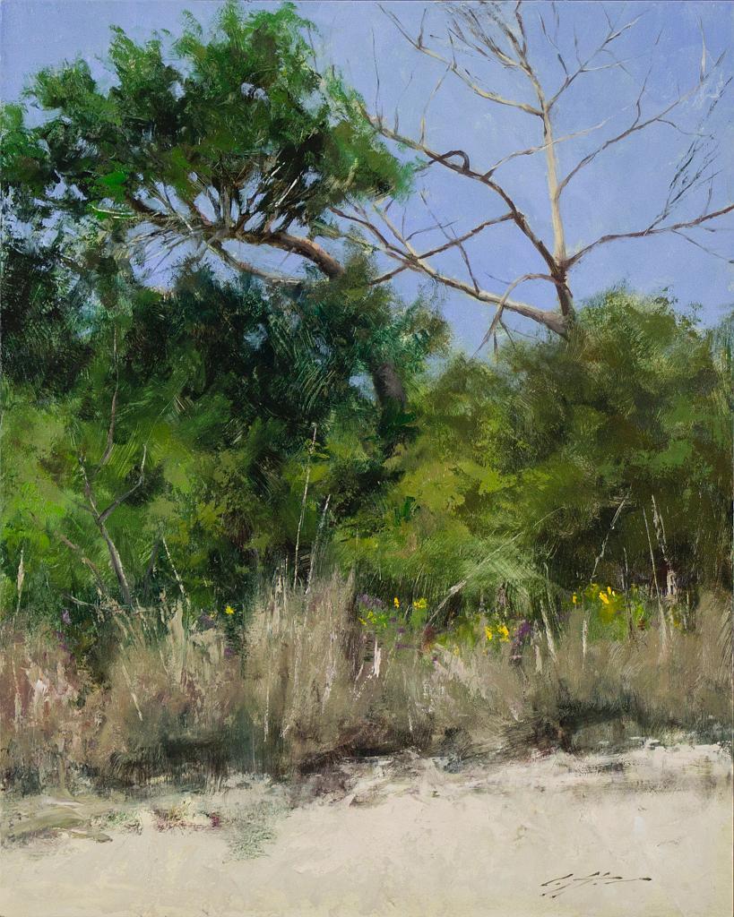 Trees at Matanzas Inlet