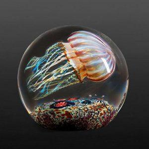 Richard Satava - Passion Moon Side Swimmer Jellyfish