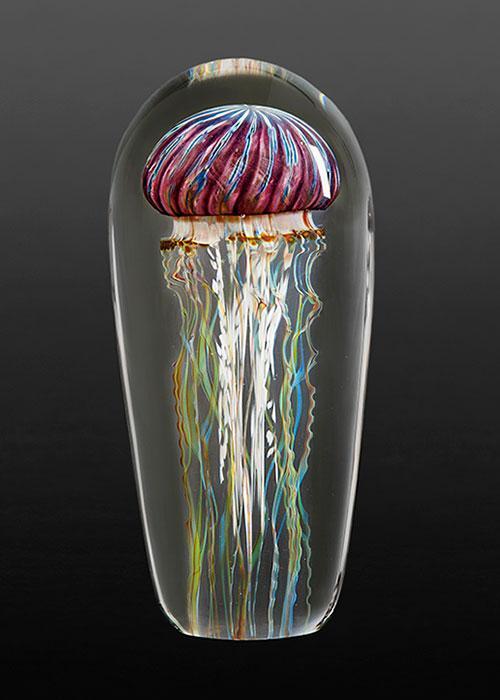 Purple Ribbed Jellyfish
